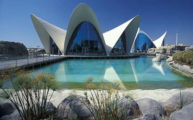 Oceanogràfic  Love Valencia