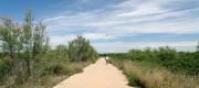 Carril bici - Valencia - El Saler
