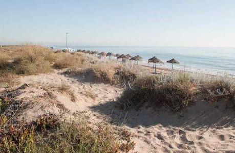 playa garrofera
