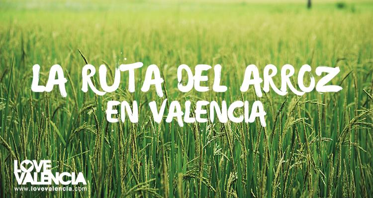 La ruta del arroz en Valencia