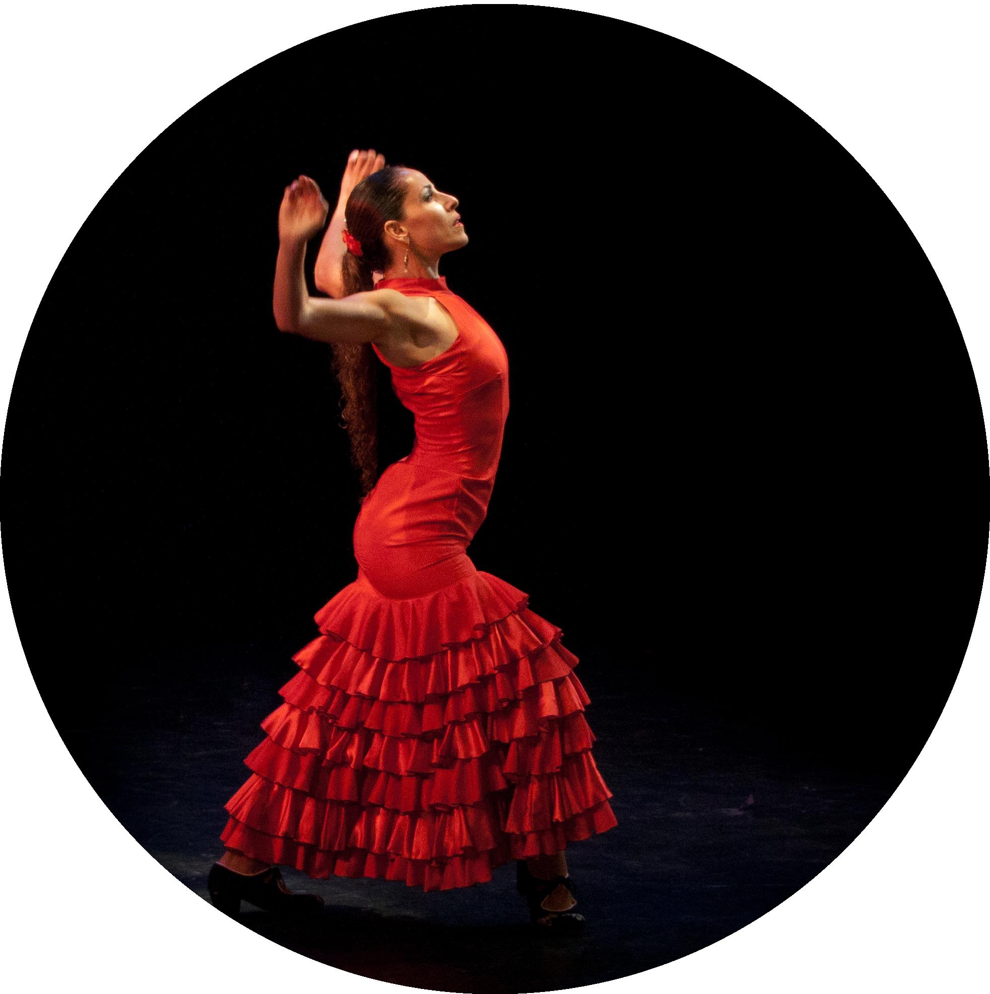 Resultado de imagen de Flamenco