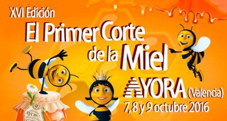 cortemiel_16-ayora