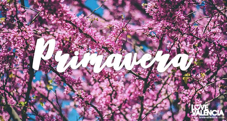 planes primavera valencia