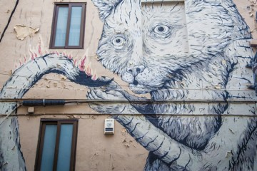 urban art in valencia