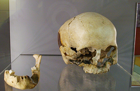 Museum of Prehistory Valencia