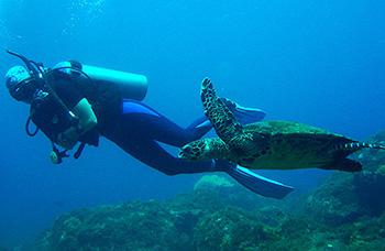 where to scuba dive in valencia spain