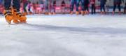 pista de hielo ciudad de las artes y las ciencias