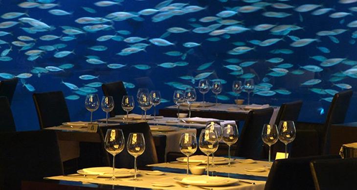 restaurante-submarino-oceanografic-valencia