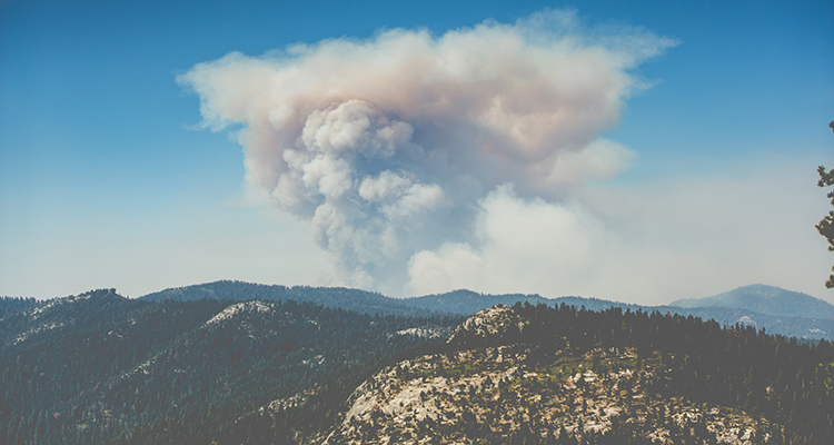 prevenir incendios forestales