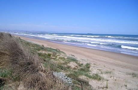 Playa de la Devesa del Saler (Valencia)