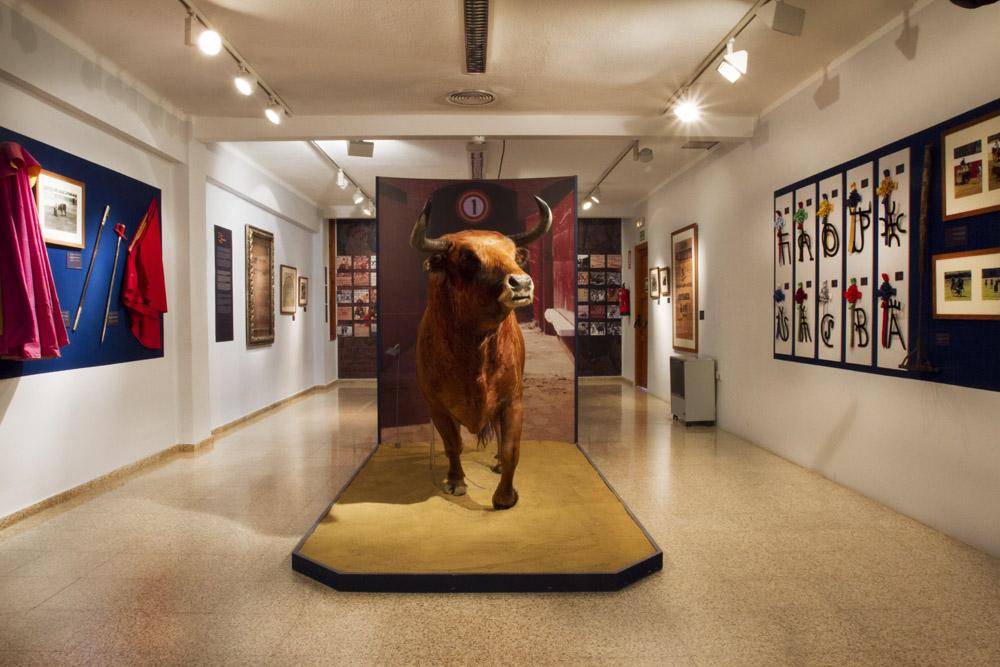 museo taurino de valencia