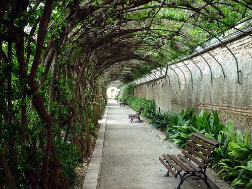 Jardines de monforte love valencia for Jardines de tabarca valencia
