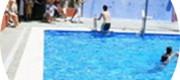 piscina el palmar