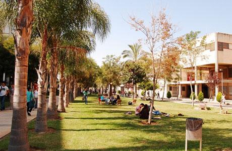 Calendario Etsa Upv.Horarios De Las Bibliotecas De La Upv Love Valencia