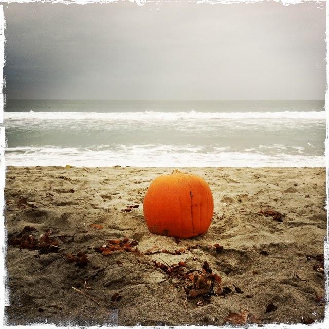 celebra halloween en valencia