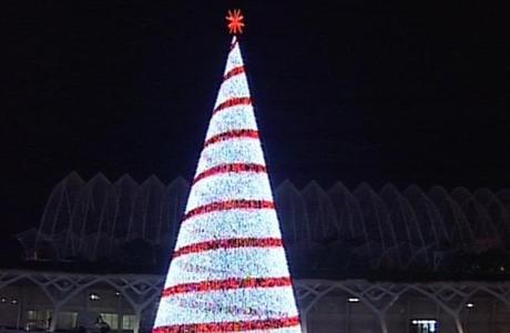 Encendido Del árbol De Navidad En La Ciudad De Las Artes Y Las Ciencias