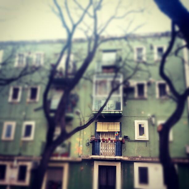 #arquitectura #barrio #ciudad #valencia #lovevalencia #avenida #cid #edificio #green #town #city #balcón #balcones. Todas las mañanas me alegra este balcón