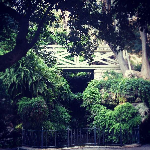 #valencia #lovevalencia #jardin #garden #GreenHeart #nice #dream