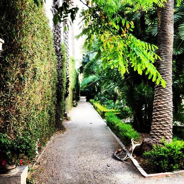 Bon dia!!!! Un poquito más y llegamos al finde, a por el jueves!!!! ?Ly garden ?????