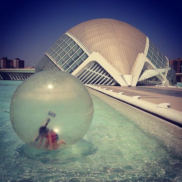 Ciudad de las artes y las ciencias. #valencia #amazing #view #incredible #experiment #valenciana #lovevalencia #city #arts #sciences #instalike #instafollow #picoftheday #photografer #photography #picture #like #instagood #instacool