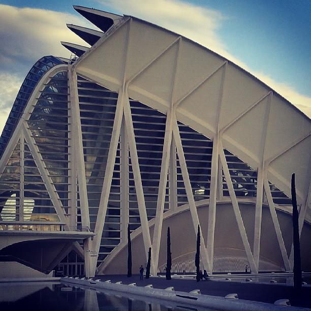 Museo de ciencias #Valencia