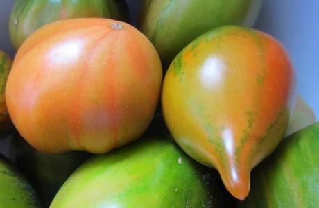 Tomates valencianos