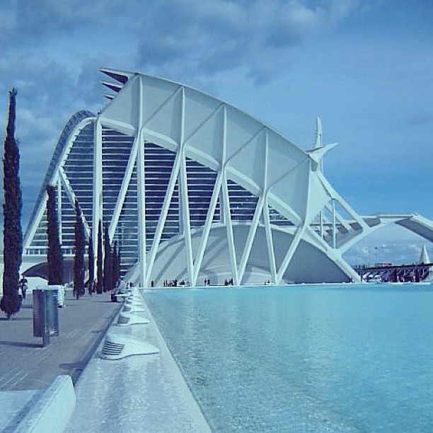 The City of Arts and Sciences in Valencia. Architect Santiago Calatrava. #valenciagram #santiagocalatrava #architecturelovers #architects #architecture #lovevalencia #spain #bilding #city #valencia