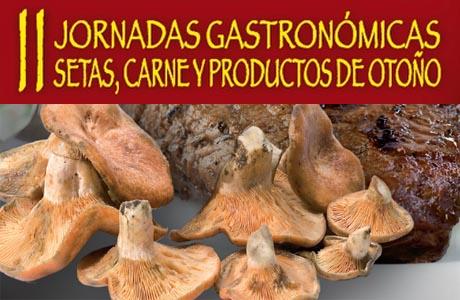Jornada Setas y Carne Castellon