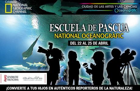 Escuela de Pascua en el Oceanogràfic del 22 al 25 de abril