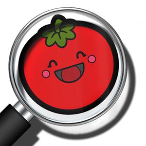Curiosidades de la tomatina 300x300