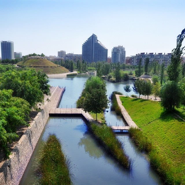 #sunny day in #valencia #valenciagram #valenciamola #lovevalencia #valenciacity #igersvalencia #igerscomunitat #springstagram #spring #spain #europe #comunitatvalenciana #garden #bioparc #photooftheday #picoftheday #bestofinstagram #bestoftheday #ig_spain #ig_europe #water #urban #urbanscapes #relax