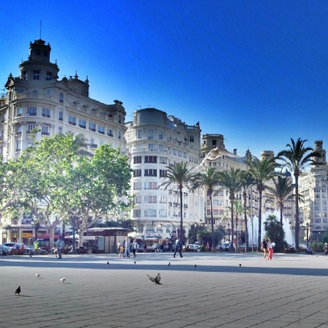 Like this city #ig_reality #igersvalencia #igsnapshots #igersworldclub #pigeon #people #animals #birds #skyline #sky #city #sun #colors #square #instalike #instaplaces #valenciaenamora #valenciagrafias #lovevalencia #estaes_valencia #valenciagram #10likes