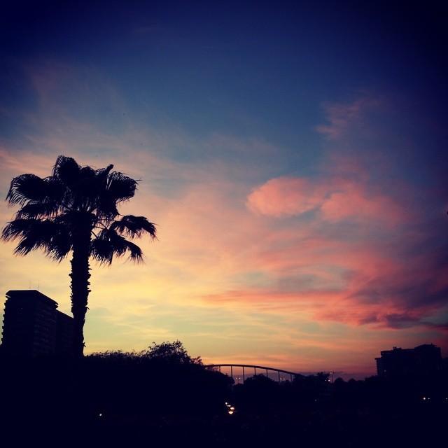 Paradiso #lovevalencia #valencia #ponte #miciudad #igersvalencia #tramonto #skyporn #fallas #espain #spagna #cena #cielo #palma #paradiso #solocosebelle #nuvole #rosa #città #travelgram #instacolours