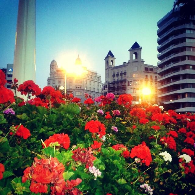 Pont de les flors #Valencia #spain