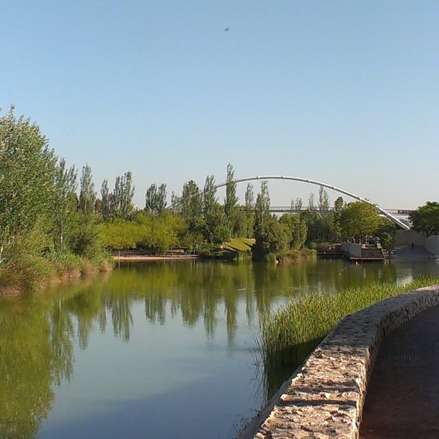 #Naturaleza domesticada - #urbangarden #park #river #Valencia #valenciagram #valenciagrafias #lovevalencia #greenarea #landscape #igersvalencia #igerseurope #igersvlc #instagramersgallery #instamoments