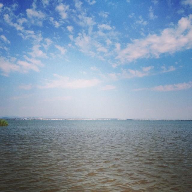 Lago albufera #valencia#valenciagram#valenciaenamora#lovevalencia#follow#igervalencia#followback#arroz#cultivo