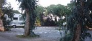 Parcela Camping Malvarrosa-Corinto