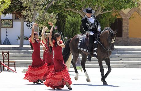 Romance del caballo andaluz en Iberia Park
