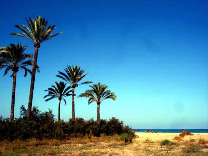 Playa Camping Malvarrosa Corinto Love Valencia