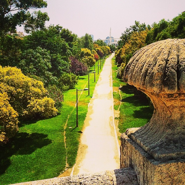 #mussol78 #cauce del rio #turia #jardin #parque #valència #valenciacity #valenciagram #valenciaenamora #valenciagrafias #lovevalencia #loves_valencia #estaes_valencia #estaes_espania #instagood #instagramers #instamessage #insta_international #insta_colourfull #placeofworld #ig_europe #followback #fotomovil_es #fotomovil_es