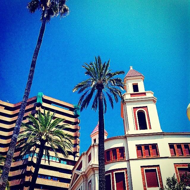 #mussol78 #alameda #valència #valenciaenamora #valenciacity #valenciagram #valenciagrafias #lovevalencia #loves_valencia #estaes_valencia #estaes_espania #instagood #instagramers #instamessage #insta_international #insta_colourfull #placeofworld #ig_europe #fotomovil_es #followback