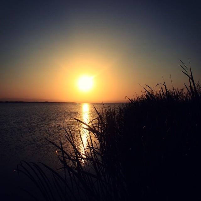 The end #Sunset #Sun #Soleil #Sol #Albufera #Pond #Lake #Water #Sea #Mar #Aigua #ElPalmar #Catarroja #ValènciaInfinita #València #ValenciaGram #IgersValencia #igerscomunitat #Agua #InstaBest #InstaGood #Enfocae #LoveValencia #MAgradaValència #Ocaso #PuestadeSol