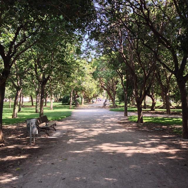 Caminando por los 9 kilómetros que tiene el Jardín del #Turia #Valencia #LoveValencia ??????