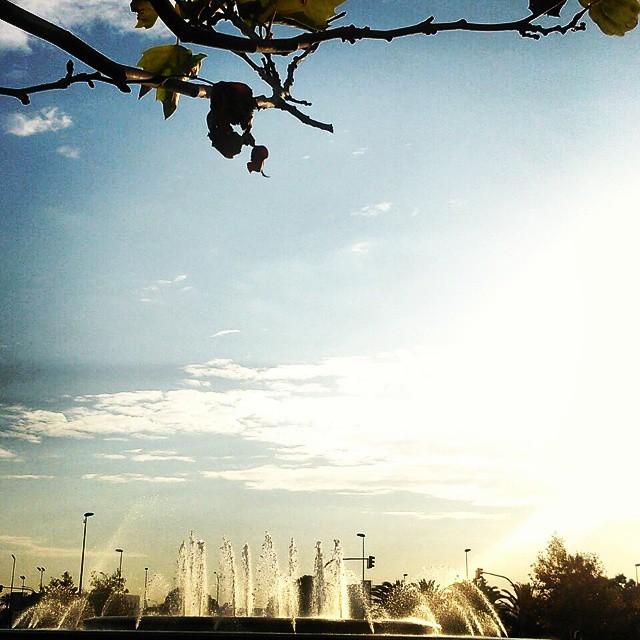 Good sunny morning! #workingnovember #otoño14 #lovevalencia