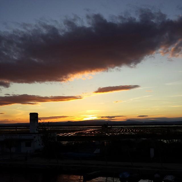 #Arroceando termina con la puesta de sol en L'Albufera.  #cosasquenohayqueperderse #Valencia #tradicion  #origen #arrozenruta #Valencia #lovevalencia #unaagendaconestilo