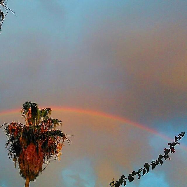 #magicrainbow #lamasbonita #lovevalencia #otoño14