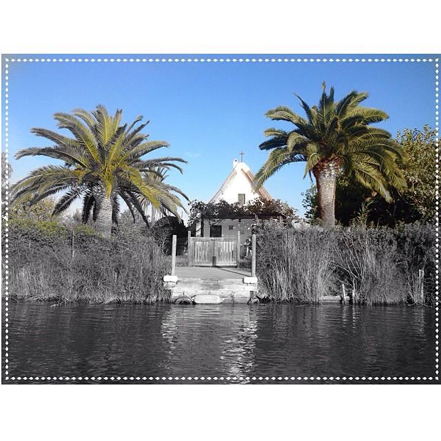 ¡Qué bonita ella! #albufera #valencia #barraca #landscape #palms #lovevalencia