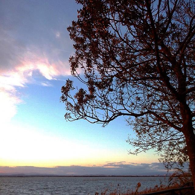 Red and blue... #valenciaturismo #valenciaenamora #valencia #valenciaterraimar #valenciamola #valenciagram #lovevalencia #comunitatvalenciana #albufera #igersvalencia #igerscomunitat #ig_spain #spain #sunset #cloudstagram #cloudporn #like4like #clouds #naturestagram #nofilter