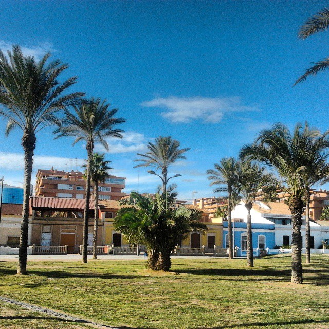 #noviembre  #platja de #alboraia #valència