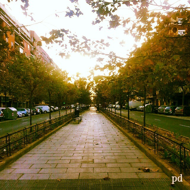#lovevalencia #valencia #picoftheday #photooftheday #fotodeldia #photodujour #españa #spain #fotodelgiorno #picvandedag